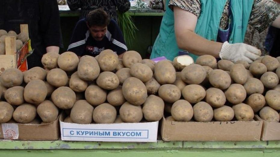 В Воронежской области подорожали овощи