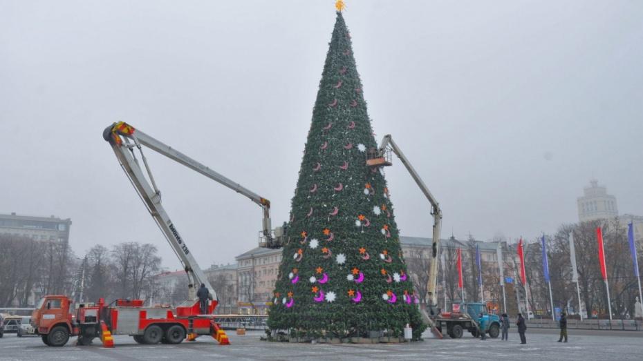 Власти Воронежа оценили главную новогоднюю елку в 1,5 млн рублей