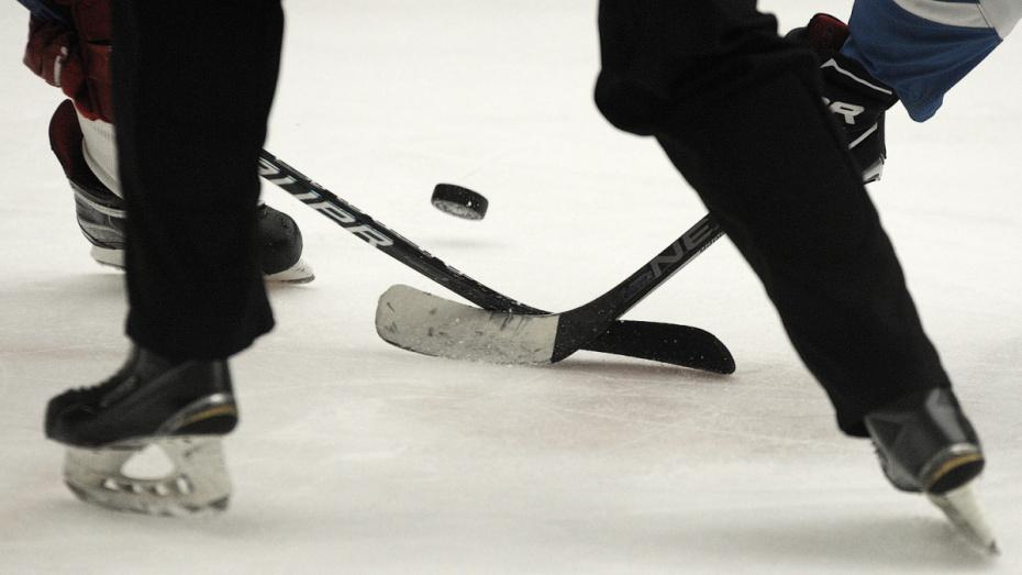Хоккеисты «Россоши» проиграли в Новомосковске в повторном матче