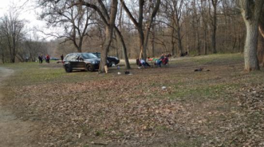 Воронежцы возмутились из-за сломанных шлагбаумов в Центральном парке