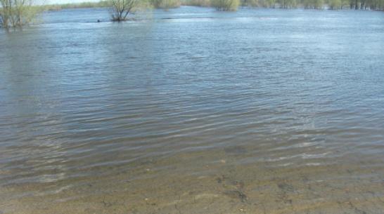 В Грибановском районе мост через реку Ворона ушел под воду