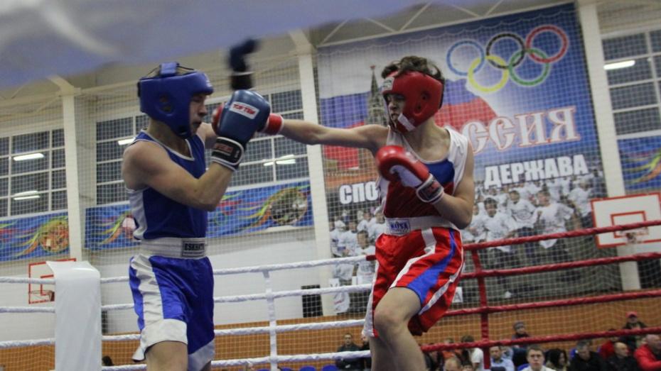 В Борисоглебске пройдут финальные соревнования по боксу областной спартакиады учащихся