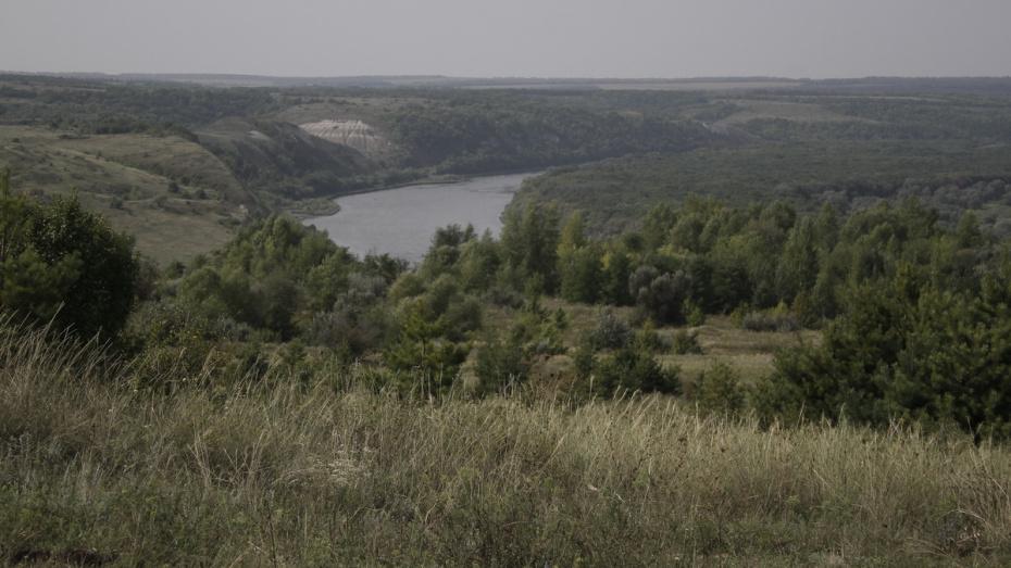 В Воронежской области подали 115 заявок по госпрограмме развития сельских территорий