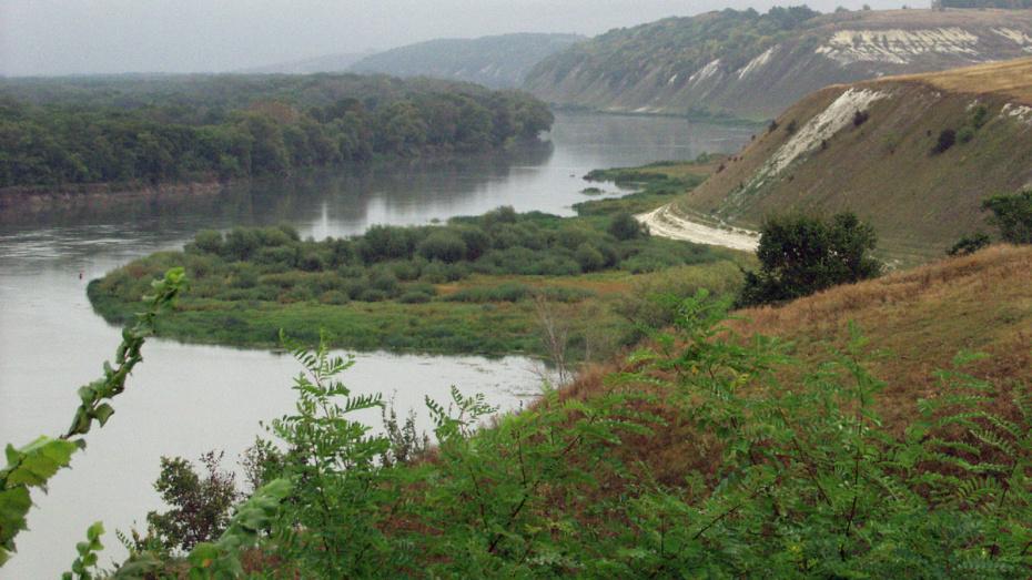 Из-за обмелевших рек фурам запретили проезд по понтонным мостам в Воронежской области