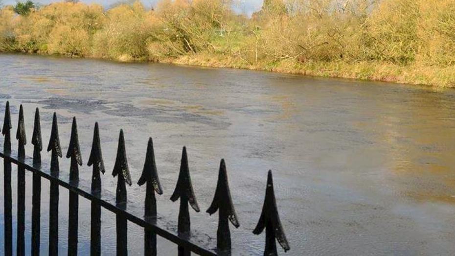 Прокуратура потребовала снести самовольно построенные пристани и заборы у реки Воронеж