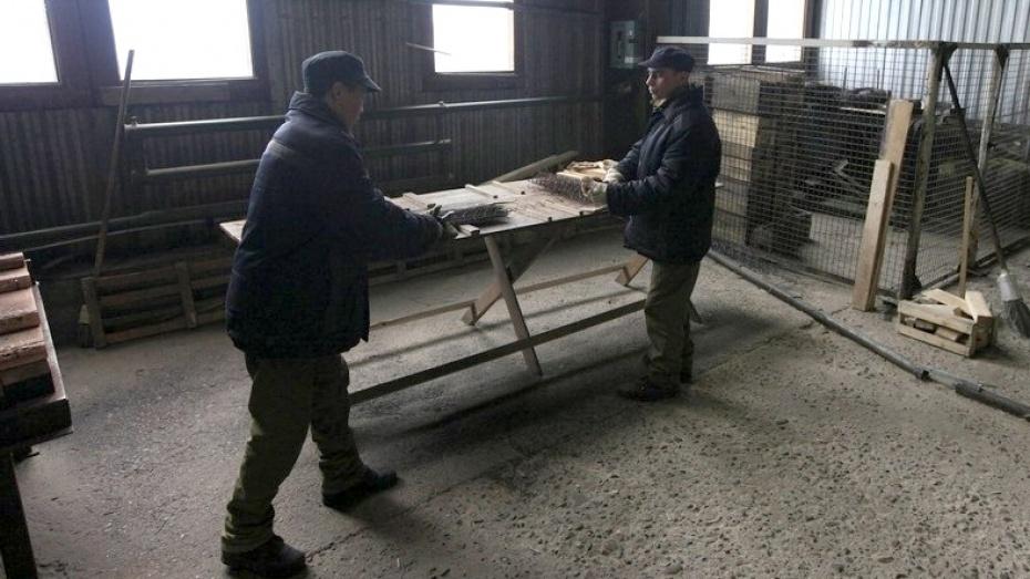 Впервый раз вистории Воронежа осуждённого отправили напринудительные работы вспециализированный центр