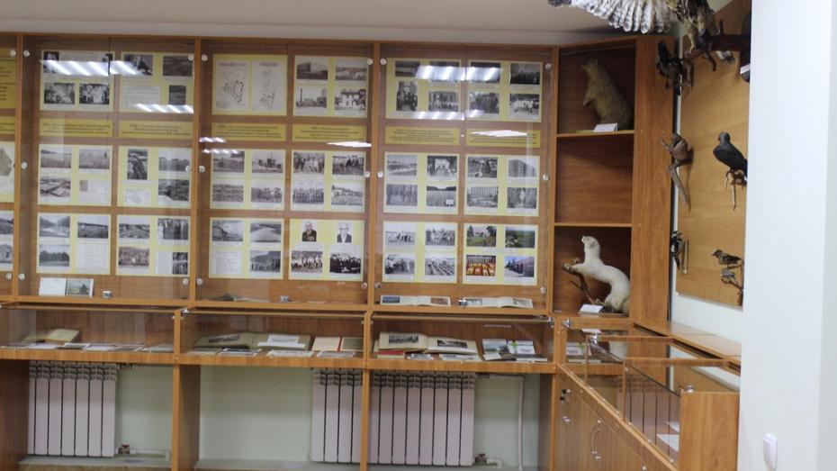 В Таловском историко-краеведческом музее отремонтировали зал природы