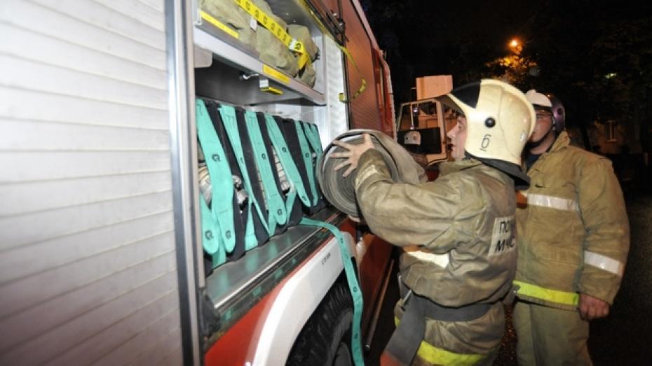 В Синих Липягах на пожаре погиб мужчина