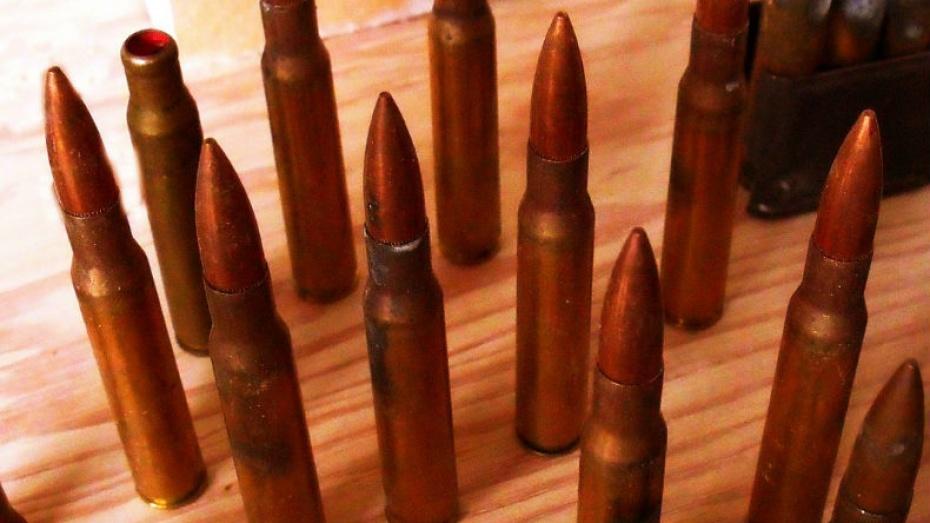 Полицейские нашли у калачеевца десятки патронов для нарезного оружия