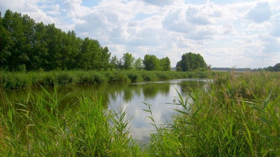 В пруду под Бутурлиновкой утонул 15-летний подросток