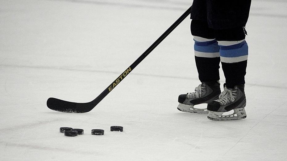 Воронежская хоккейная школа отметила юбилей матчем профессионалов против любителей