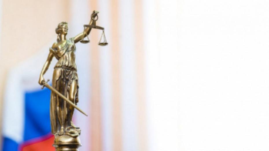 Житель Семилукского района получил 9 лет строгого режима за убийство незнакомца топором