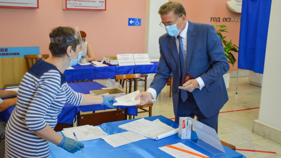 Воронежский сенатор проголосовал по поправкам к Конституции