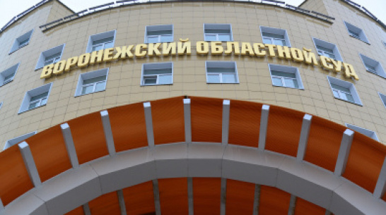 Воронежский областной суд приговорил мужчину к 17 годам за убийство беспомощных жертв