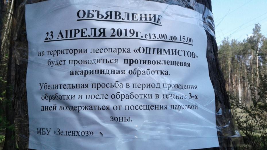 Воронежцев попросили 3 дня не посещать парк Оптимистов