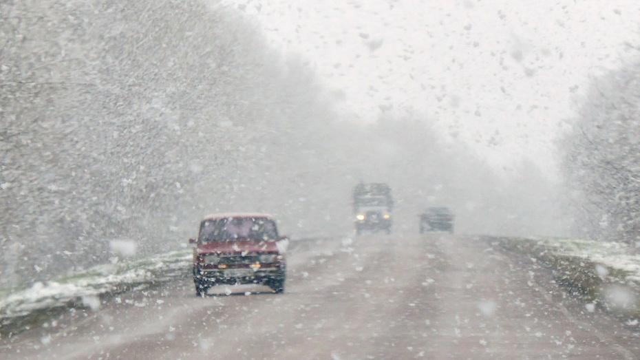 Cотрудники экстренных служб : вВоронежскую область придет мокрый снег исильный ветер