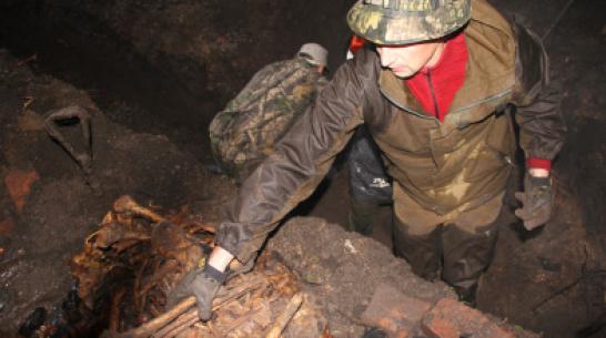 Воронежские коммунальщики обнаружили останки 15 красноармейцев