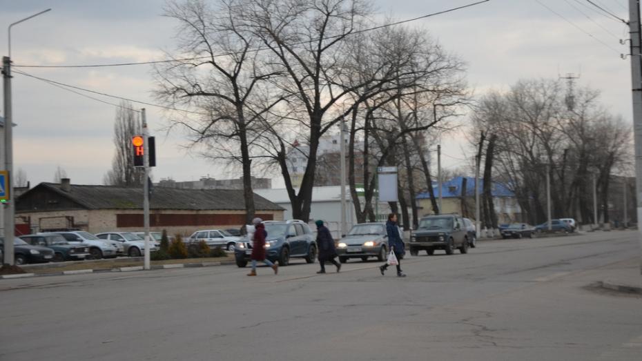 В Павловске установят новые светодиодные светофоры