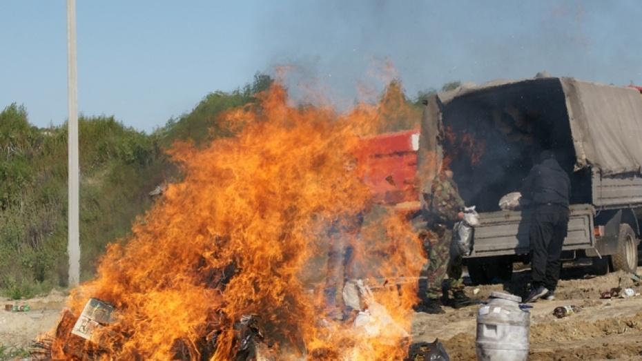 Наркополицейские сожгли сто килограммов запрещенных веществ