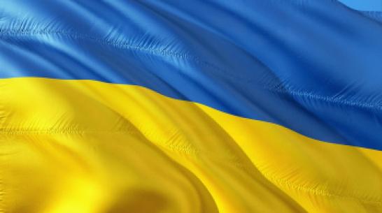 Воронежская компания попала под украинские санкции