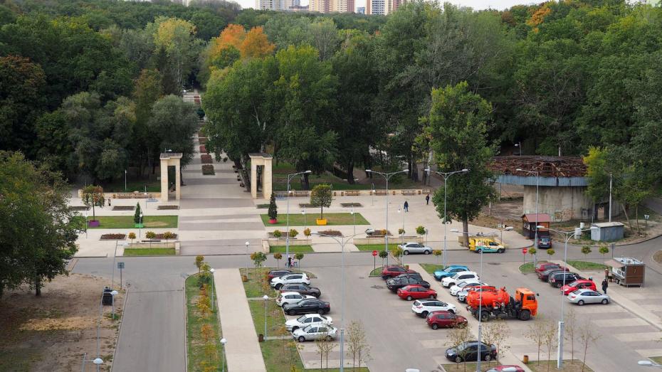 Концепции развития Центрального парка Воронежа представят 3 международные компании