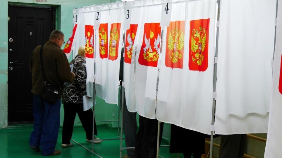 В Воронежской области более 15% избирателей пришли на выборы к полудню
