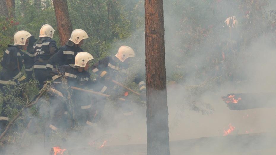 Спасатели потушили два ландшафтных пожара на окраине Воронежа