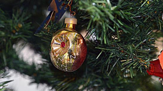 Минтруд предложил устроить 10-дневные новогодние каникулы