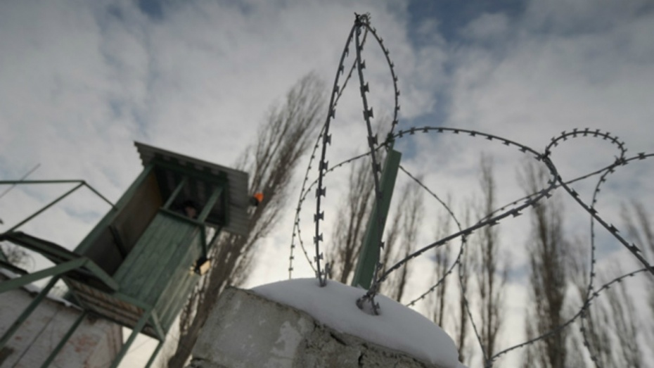 Амнистия в Воронежской области коснется почти 3 тысяч человек