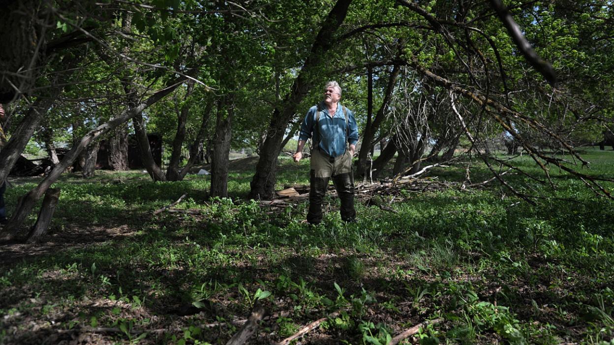 Заброшенные хутора: как пустеют воронежские деревни. Участок №22