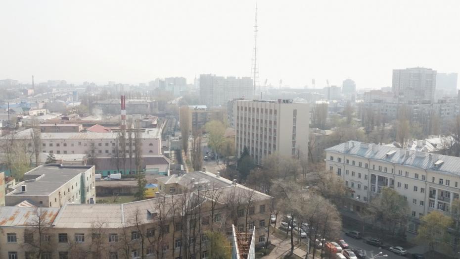 Воронежцы пожаловались на смог и запах гари