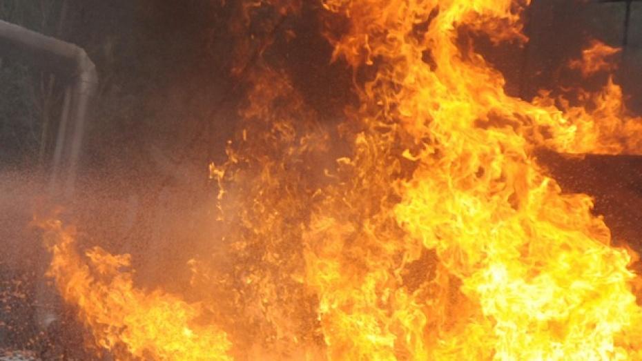 В Новоусманском районе произошел пожар, жертвой которого чуть не стали трое детей