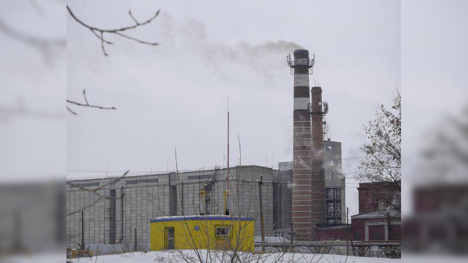 Роспотребнадзор Воронежской области установил причину выброса шелухи на заводе в Лисках