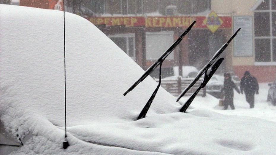 Из-за снегопада воронежские туристы опоздали на самолет
