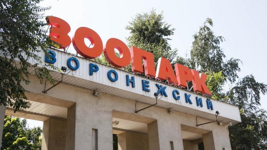 Сквер у Воронежского зоопарка закроют 2 июля