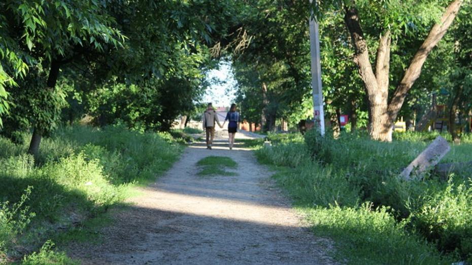 Новохоперцам предложили обсудить строительство городского сада