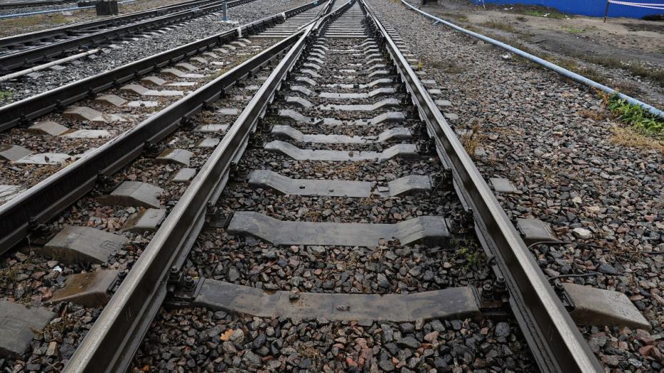 За два месяца на железной дороге в Воронежской области погибли 4 человека