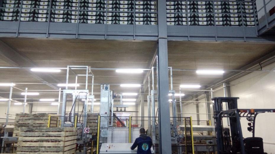 Хранилище на5 тыс. тонн яблок открыто вВоронежской области