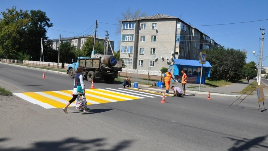 Пешеходные переходы появятся возле всех школ районов Воронежской области в 2018 году