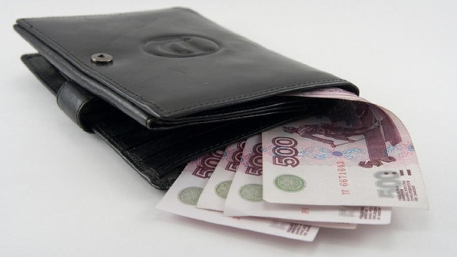 ЕПСС: собственники жилья вВоронеже задолжали 225 млн руб. зажилищно-коммунальные услуги