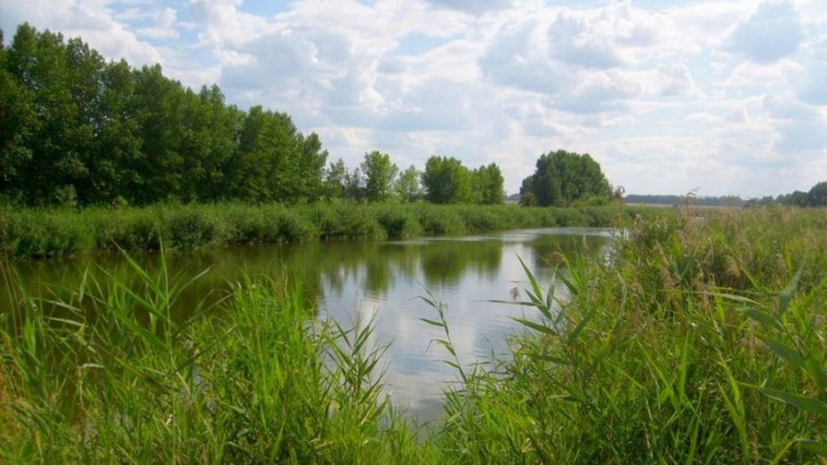 В Каменском районе водолазы обнаружили тело 53-летнего мужчины в пруду