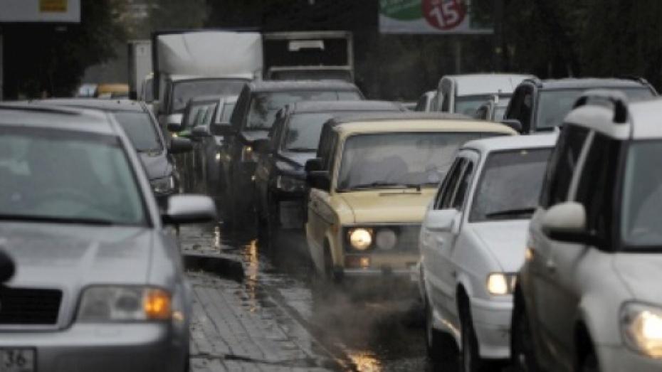 Воронежец опубликовал петицию в поддержку платных парковок в центре города