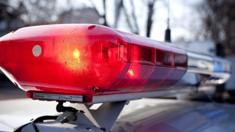 На воронежской трассе иномарка влетела в фуру: 2 взрослых погибли, 2 детей пострадали