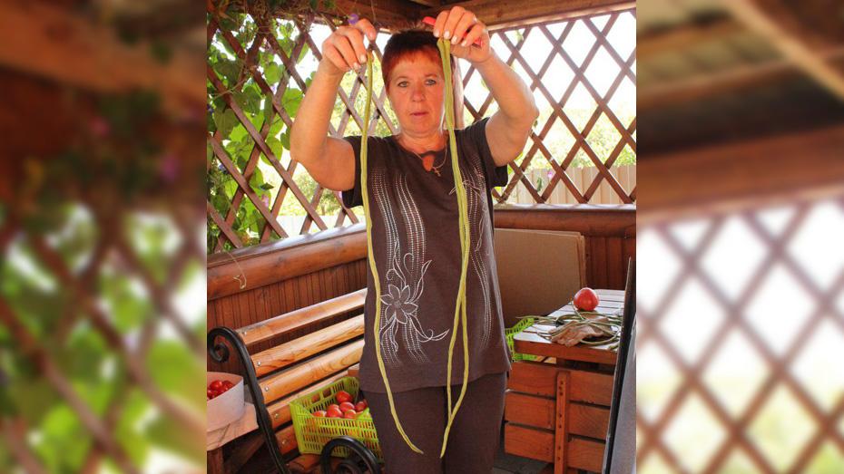 Жительница Хохольского района вырастила метровую стручковую фасоль