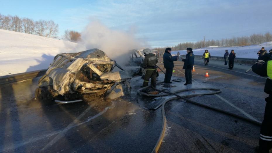 Воронежские следователи начали поиск очевидцев ДТП с пожаром, в котором погибли 8 человек