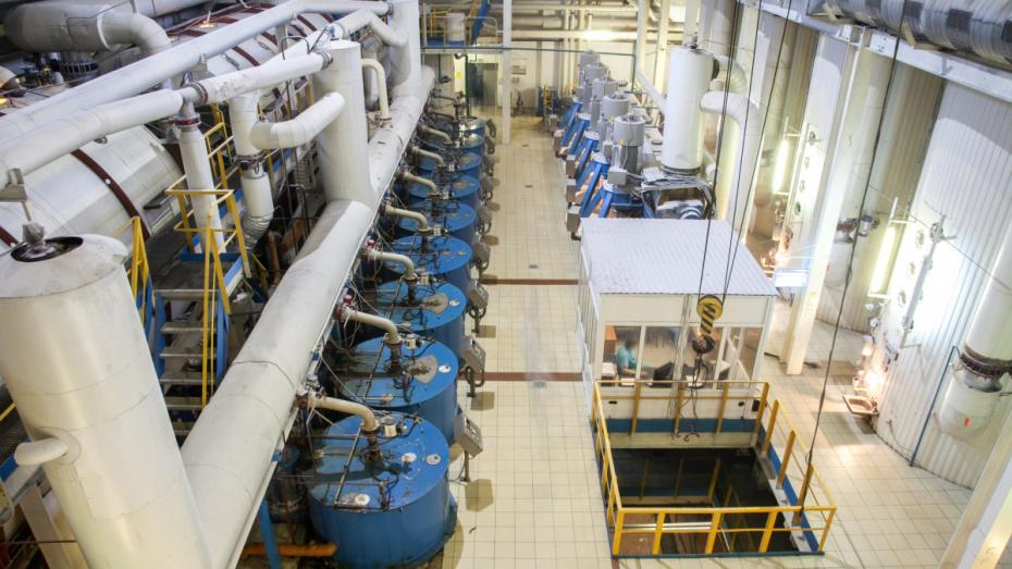 Воронежский «Продимекс» запустил 5 из 7 сахарных заводов