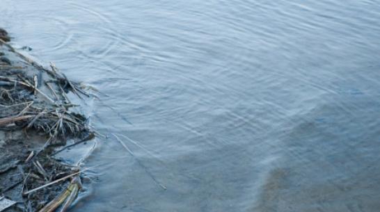 В Воронежской области рыбак нашел в реке тело мужчины
