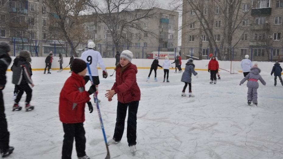 В Павловске открыли первую профессиональную хоккейную площадку