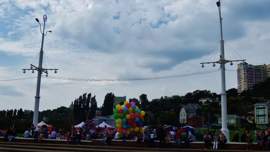 Освещение на улицах Воронежа начнут автоматизировать уже в этом году