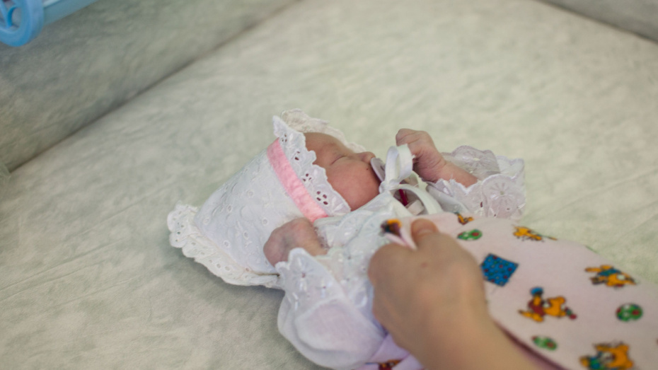В Воронежской области в I квартале 2019 года родились Мелисса и Актилек